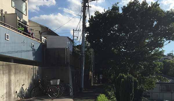 なんじゃもんじゃカフェ_画像3