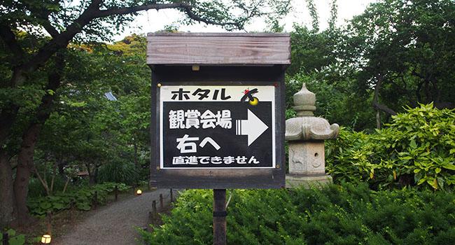 横浜の三渓園_画像13