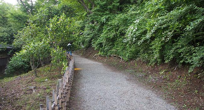 横浜の三渓園_画像14
