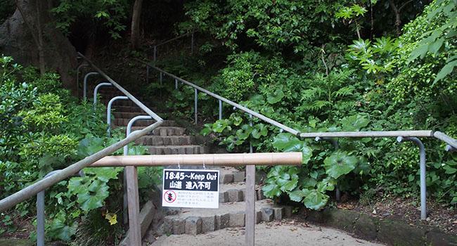 横浜の三渓園_画像15