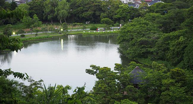 横浜の三渓園_画像17