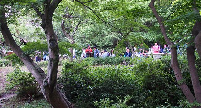 横浜の三渓園_画像24