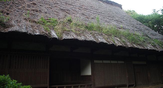 横浜の三渓園_画像25