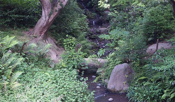 横浜の三渓園_画像29
