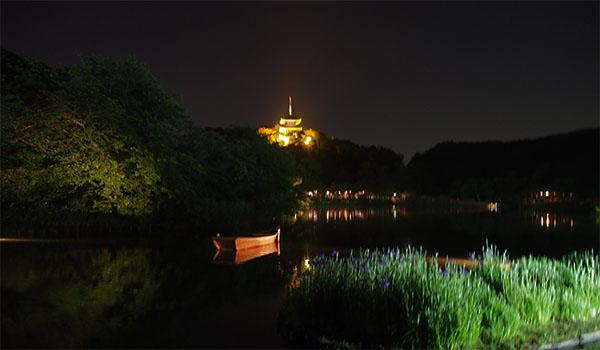 横浜の三渓園_画像37