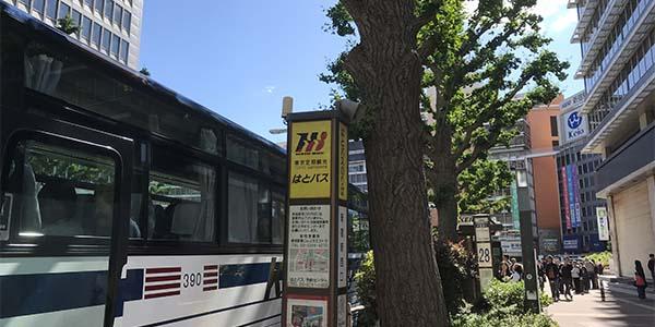 はとバスの日帰りツアーのブログ_画像2
